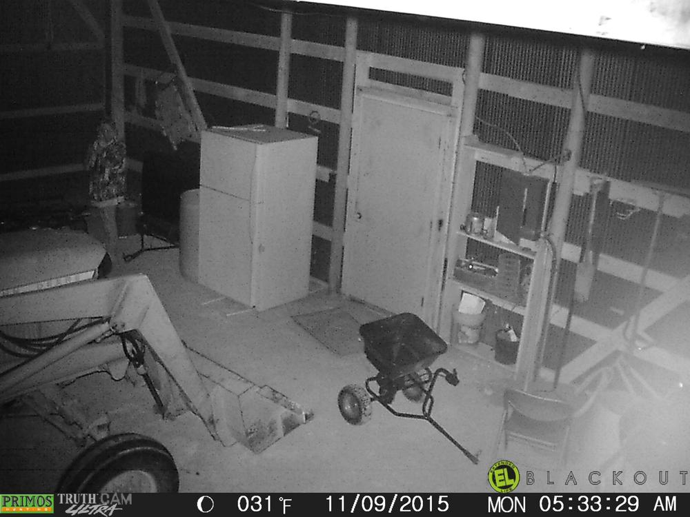 burglary suspect female 6.jpg