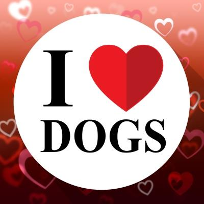 I Love Dogs by stuart miles and freedigitalphotos.net.jpg